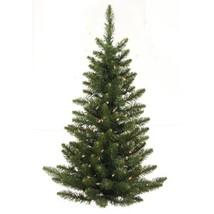 Vickerman 3' Camdon Fir Wall Tree with 50 Warm White (3'|Warm White Led ... - $64.93