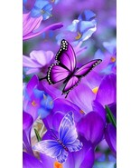 Butterfly Artifact – Improve your Creativity with Apollo - $350.00