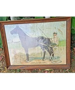 Dan Patch 1:56 Antique Framed Print Racing Horse Possible canvas or Cloth - £135.98 GBP