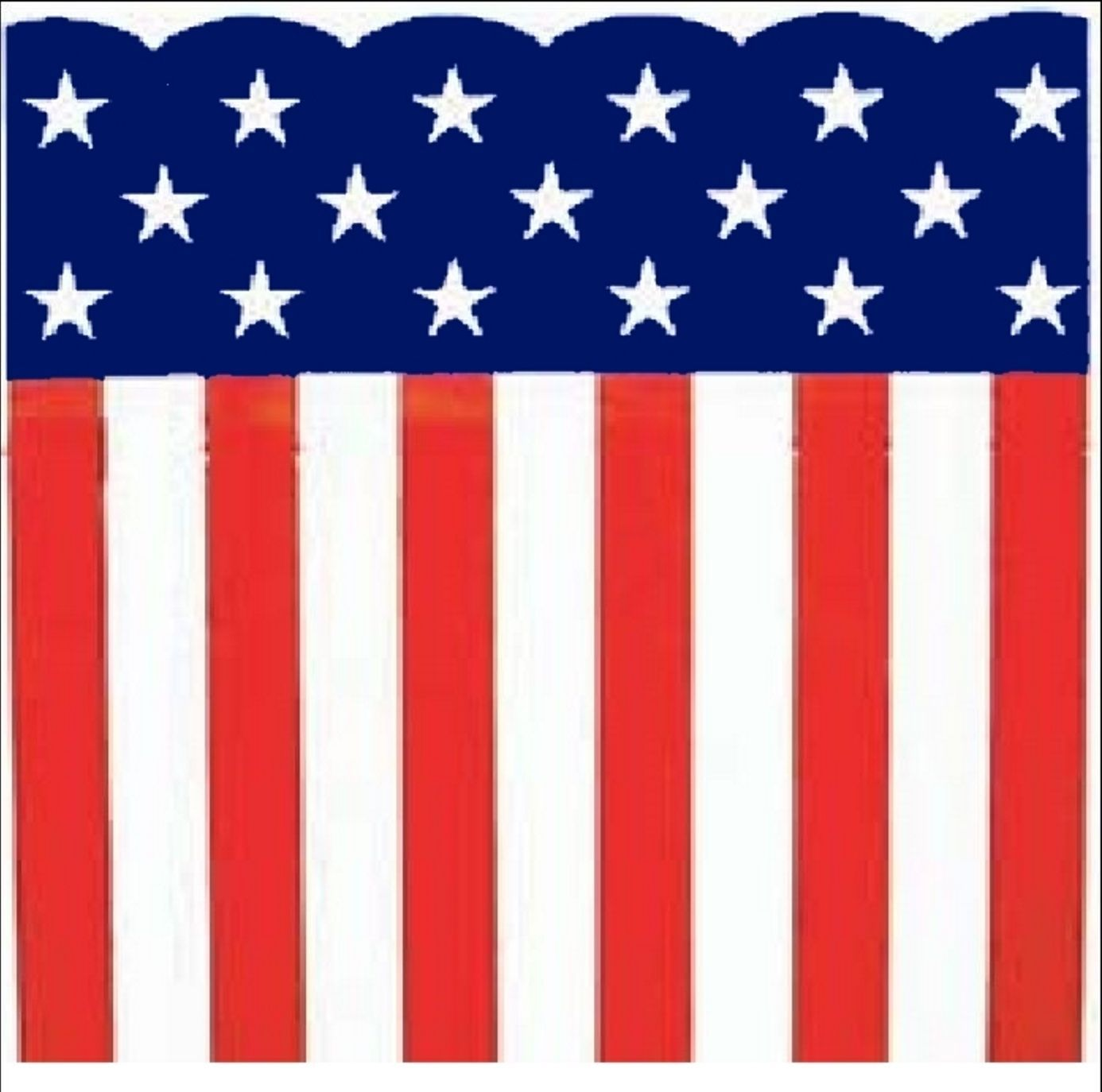 """Patriotic Heavy Plastic Bunting Roll 29"""" X 150' Stars & Stripes Print"""