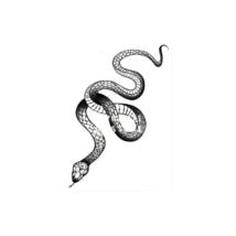 Black Snake Temporary Tattoo Stickers For Women Men Body Waist Waterproof- 3 pcs image 1