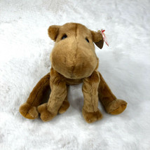 Plush Ty Beanie Baby 'Humphrey' Camel Original 9 -1998 - $19.24