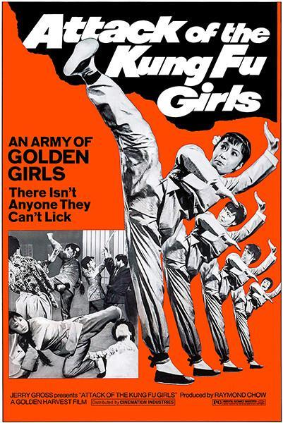 Primary image for Attack Of The Kung Fu Girls - 1973 - Movie Poster