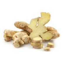 5 plant deal Ginger cullinary root Zingiber officinale edible live plant - $73.78