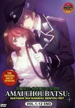 AMAI CHOUBATSU: Watashi Wa Kanshu Senyou Pet 1-12 End DVD UNCUT Ship From USA