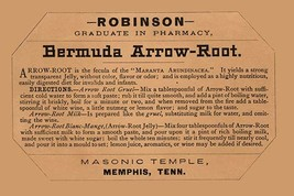 Bermuda Arrow-Root - Art Print - $19.99+