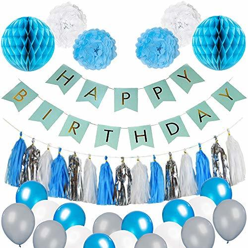 Blue Birthday Party Decorations - Blue White and Silver Party Supplies for The B
