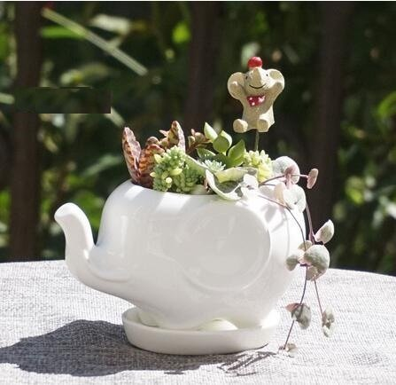 Youfui Cute Succulent Planter Animal Shaped Flower Pot Decor for Home Office Des