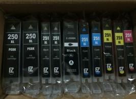 EZink Printer Ink 10 sealed cartridges replaces Canon 250/251XL -  - $19.75