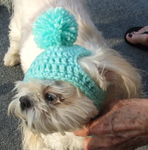 "Handmade Crochet Cat/Dog Hat ** 3 Sizes ***   ""MINT"" - $12.00+"