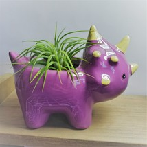 "Live Air Plant in Dinosaur Animal Planter, 5"" purple glazed ceramic pot, Tyson image 1"