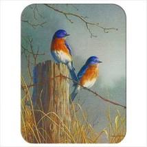 McGowan TT92051 Tuftop Bluebirds Cutting Board- Small - $44.18 CAD