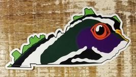Kentucky Wood Duck Sticker Decal - $4.95