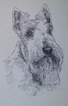 Scottish Terrier Dog Art Portrait Print #236 Kline adds your dogs name f... - $49.45