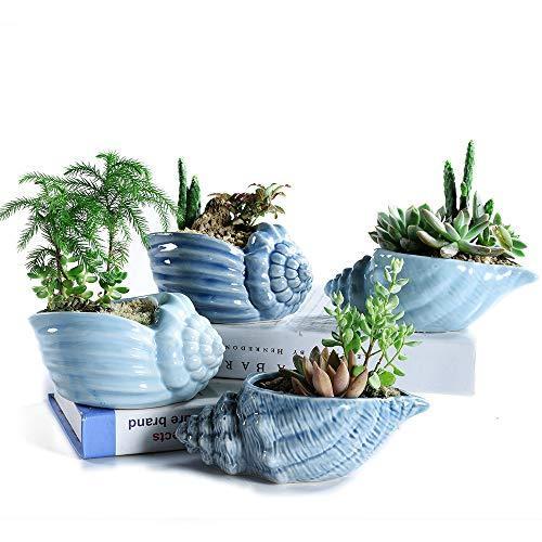 SUN-E 5.5 Inch Blue Conch Ocean Series Ceramic Base Serial Set Succulent Plant P