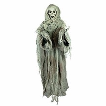 Holidayana Animatronic Floating Skeleton - Sound and Touch Activated Hal... - $41.29