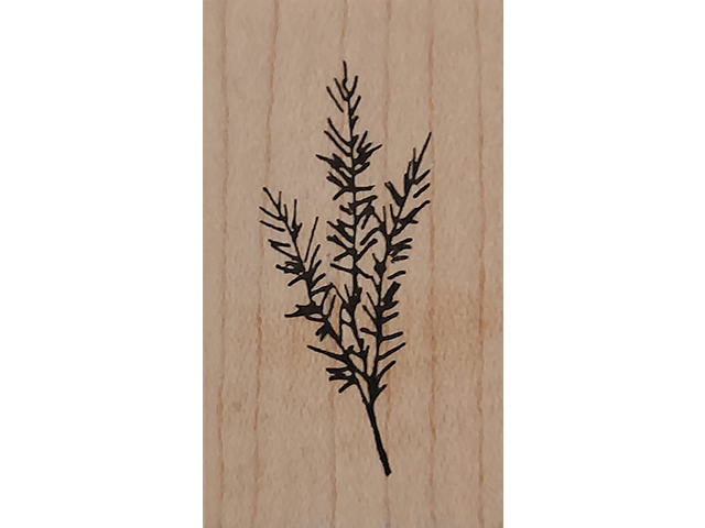 Judith Floral Branch Wood Mounted Rubber Stamp #C-69