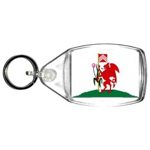 cardiff  keyring  handmade in uk from uk made parts, keyring, keyfob