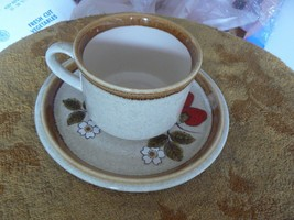 Mikasa cup and saucer (Luscious) 1 available - $4.36