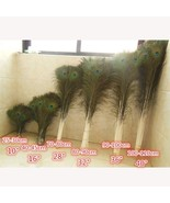 HOT SALE!!! 50pcs/lot pure natural peacock feathers eyes 10-36''  more d... - $30.36