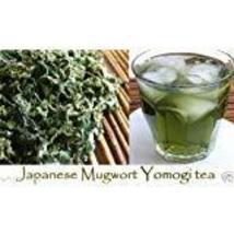 Japanese Mugwort Seeds-YOMOGI - Artemisia princeps, 2,000 Heirloom seeds - $6.93