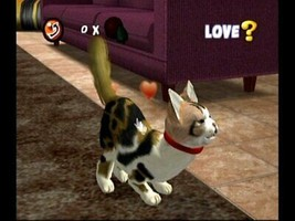 Purr Pals - Nintendo Wii Video Gioco image 2