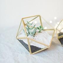 Bella's garden Geometric Copper Glass Terrarium Container Desktop Plante... - $20.22