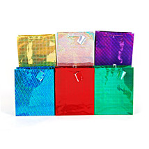 13W x 18H x 5 1/2G Extra Large Hologram Color Shine, 6 Designs, Case of 108 - $230.35