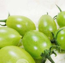 5pcs Super Sweet Green Tomato Vegetable Seeds, Tasty Edible Fruits IMA1 - $20.95