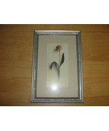 Framed picture - Single flower and Stem - $16.82
