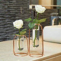 PuTwo Vases Set of 2 Metal Flower Vase Glass Vase Planter Terrariums Gol... - $54.82
