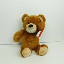 Baby Gund Brushing Buddy Bear Plush Stuff Animal - $13.54