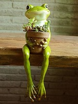 Gemmia Sucuulent Cactus Plant Pot- Happy Frog (Happy Frog) - €40,64 EUR
