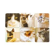 SET OF 6 CORK BACKED CAT COASTERS HEAT RESISTANT TO 110°C 12CM X 12CM - $19.26