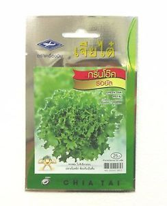 NEW.1pcs Lettuce Seeds Green Oak Organic Vegetable Bulk Seed