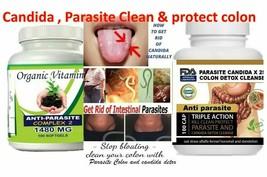 Natural KIT Candida Colon Detox Cleanse Antifungal Parasite Organic Vege... - $40.35