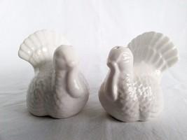Kitchen Utensils Salt and Pepper Shaker Set Turkey Bird Tableware Decor Spices  - $17.71