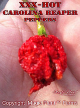 Carolina Reaper Dried Whole Reaper Peppers (1kg/2.2lb) Extremely Hot - $128.65