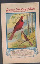 Intimate Life Study of Birds Nelson Doubleday ad booklet - $6.73