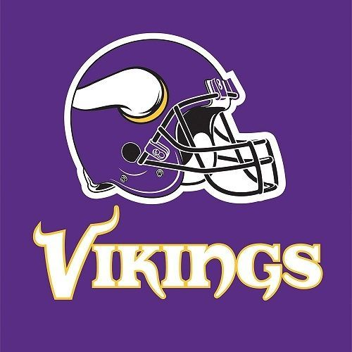 Minnesota Vikings  Luncheon Napkins & Plates Party Kit for 8 NFL Tailgate