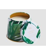 Pier 1 Candle Jungle Palm Single Wick 6.8 oz Discontinued Fave - $14.84