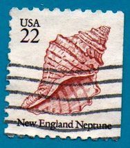 Scott  #2119 Used 22c US Postage Stamp (1985) New England Neptune Seashell - $1.99