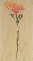 Hero Arts A Real Field Wildflower Rubber Stamp #F2665