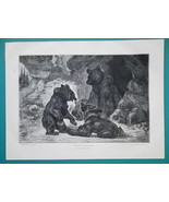 BEARS Bear Family Playing in Forest - 1876 Antique Print - $13.49