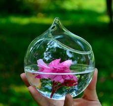 Hanging Glass Vase Terrarium Flower Planter Holder Ornament Room Home De... - $9.49