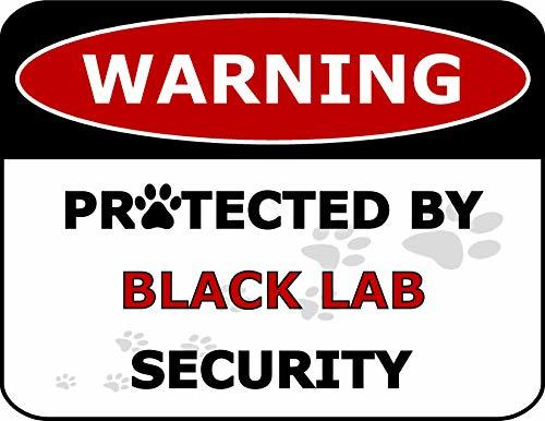 Primary image for Top Shelf Novelties Warning Protected by Black Lab Security Laminated Dog Sign (