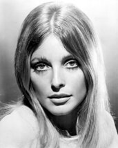 Sharon Tate Iconic Portrait Of 1960'S Legend 16x20 Canvas Giclee - $69.99