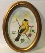 Vtg Goldfinch Water Color Doris Reaver - $23.36