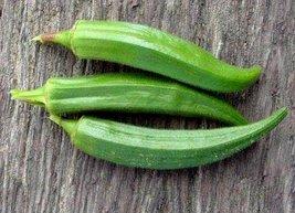 1/4 Oz Seeds of Jambalaya Okra - $21.29