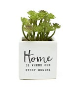 ReLive Decorative Expressions - Realistic Artificial Succulent in Square... - $13.15